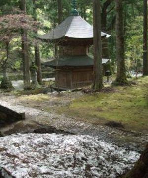 2011050205_eiheiji003_2